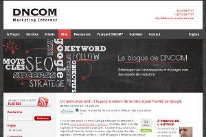 Dncom : 3 leçons à retenir de la mise à jour Panda de Google