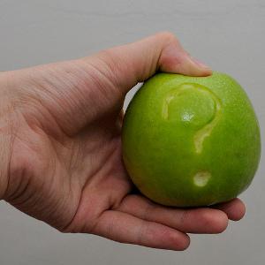 Apple question