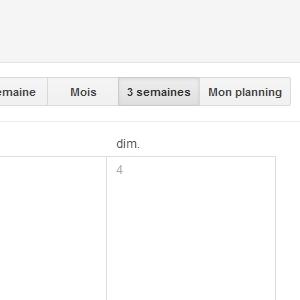 Google Agenda Vue personnalisée