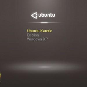 Linux multiboot