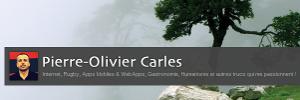 Pierre-Olivier Carles
