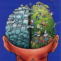 Patate cerveau