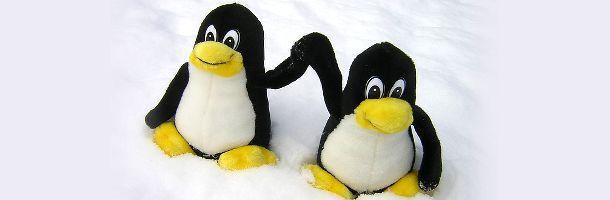 N'aie pas peur de Linux ! Tout le nécessaire pour remplacer Windows
