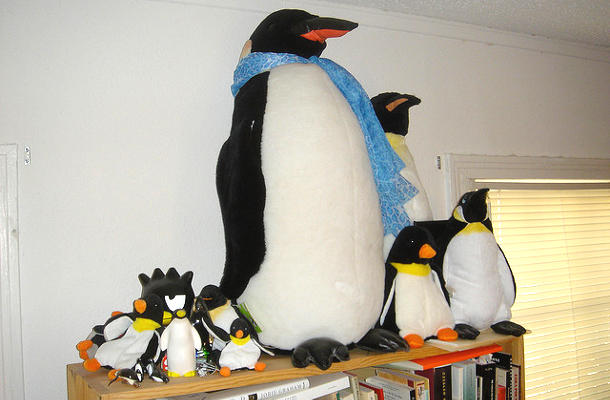 De Windows XP à Linux : Tux à la maison